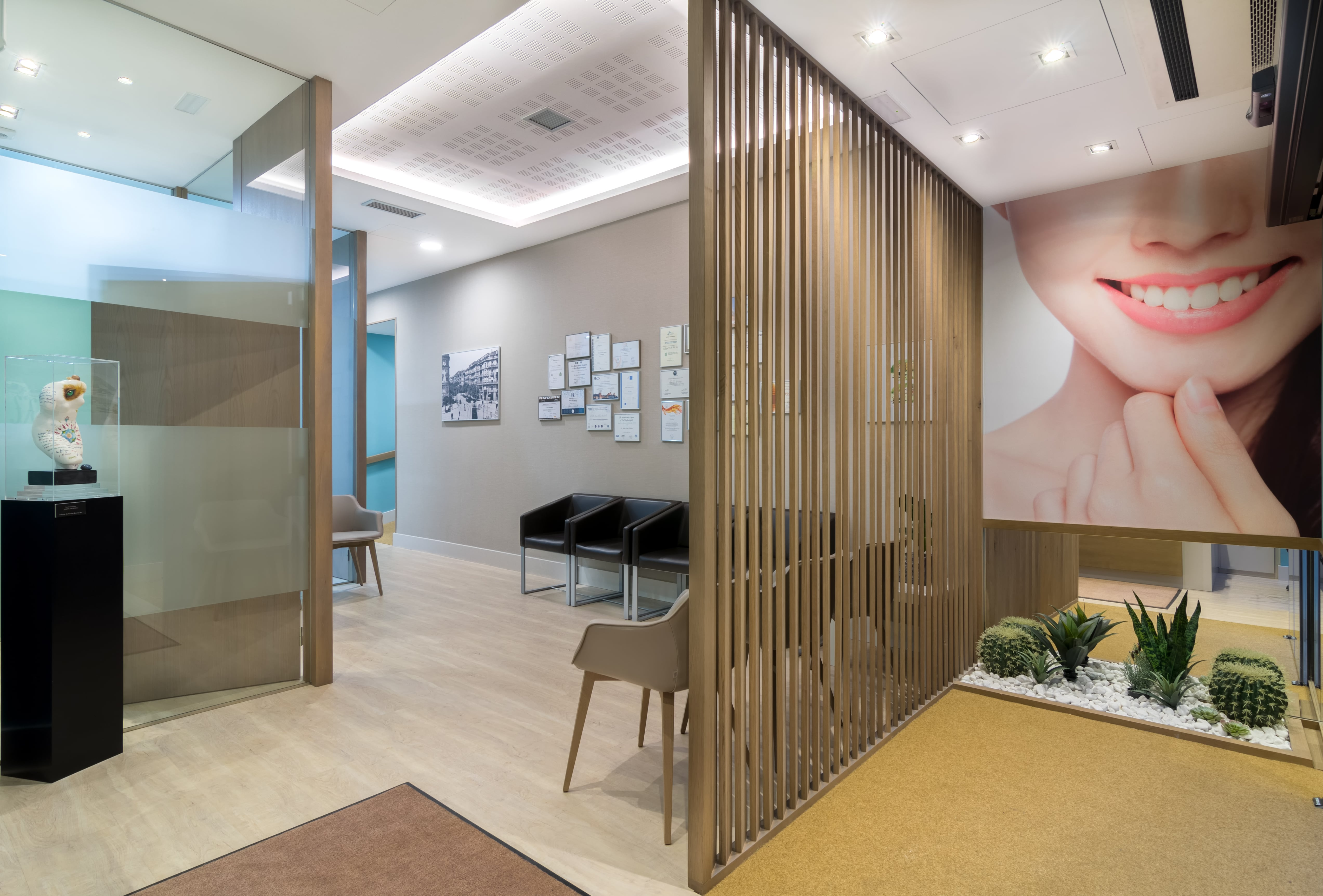 Decoración Clínica Dental Bilbao